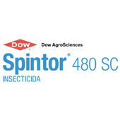 Dow Spintor