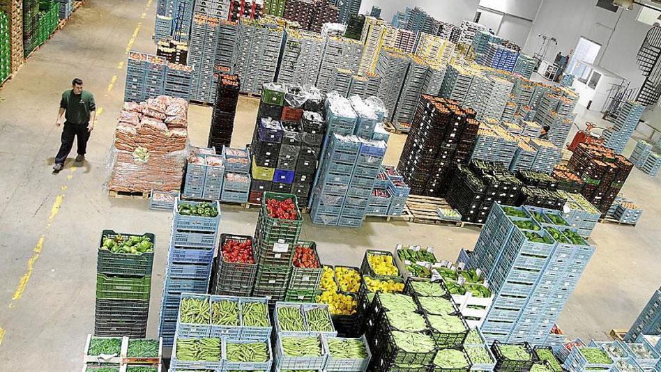 Exportación hortofrutícola de España en los tres primeros trimestres: 8.673 millones de euros