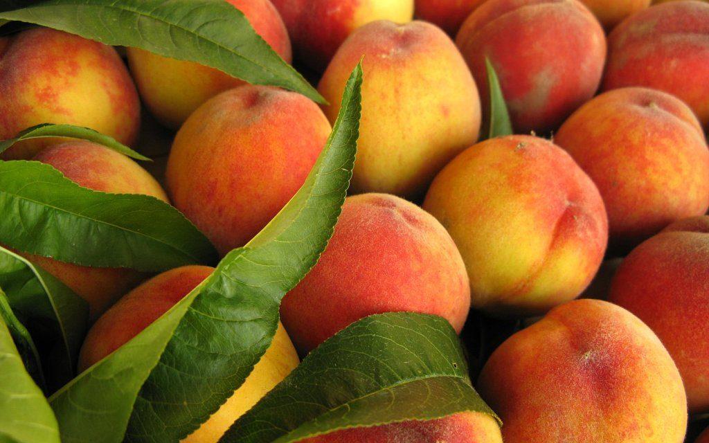 El Ministerio de Agricultura abre un cupo para transformar en zumo fruta de hueso retirada del mercado