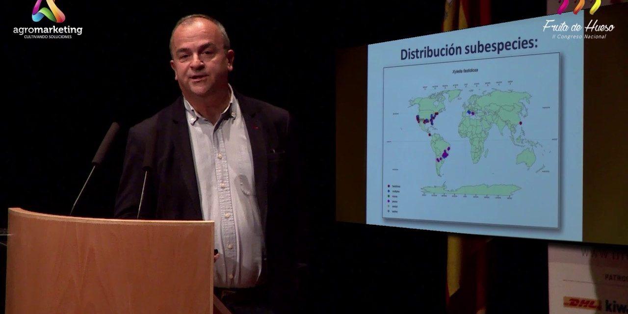 Ponencia de D.Francisco González Zapater sobre la Xylella Fastidiosa