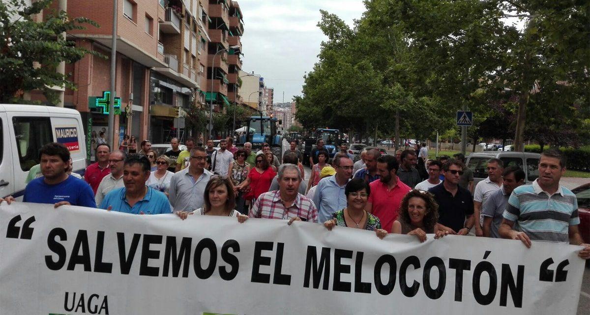 El sector de Fruta de Hueso Español estudia este Otoño las soluciones a su crisis