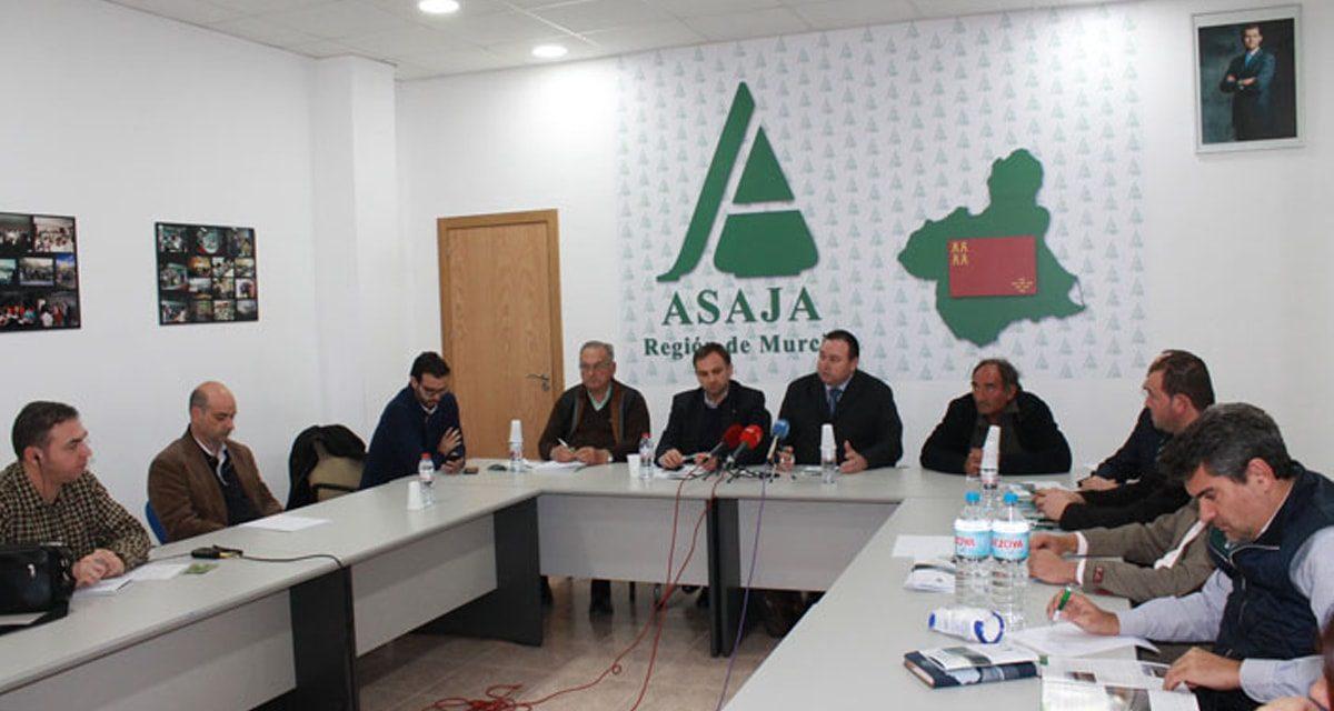 ASAJA propone una Interprofesional para la fruta de hueso para frenar la crisis de precios del sector