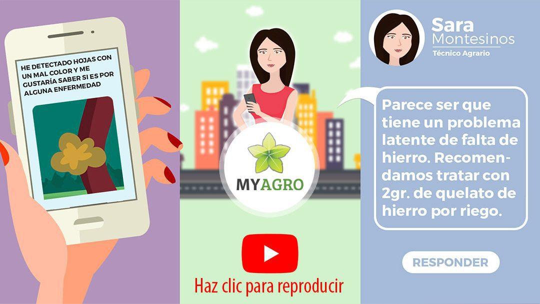 Se presenta el video del Grupo Operativo Sistema Integrado de Asistencia Técnica en Campo