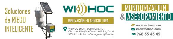 banner WIDHOC